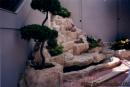 石山池-2